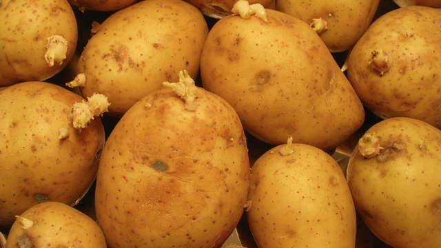 ZeitrafferVideo  Kartoffeln  181  Frchte und Lebensmittel